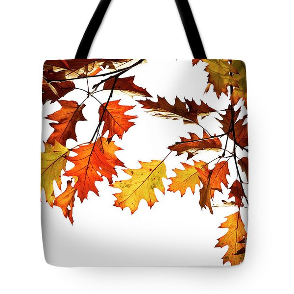 Tote Bag featuring the photograph Red Oak Leaves In Fall by Tim Gainey