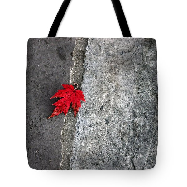 Tote Bag featuring the photograph Red On Gray by Allen Carroll