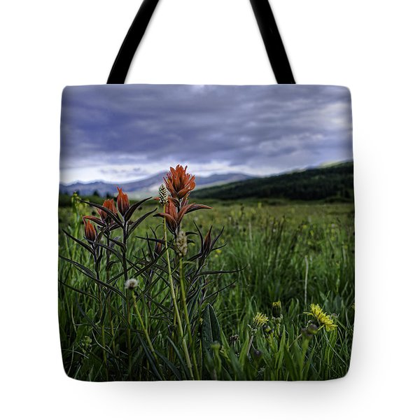 Red Paintbrush Tote Bag