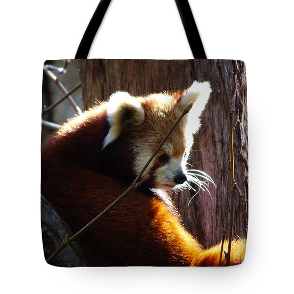Tote Bag featuring the photograph Red Panda by Angela DeFrias