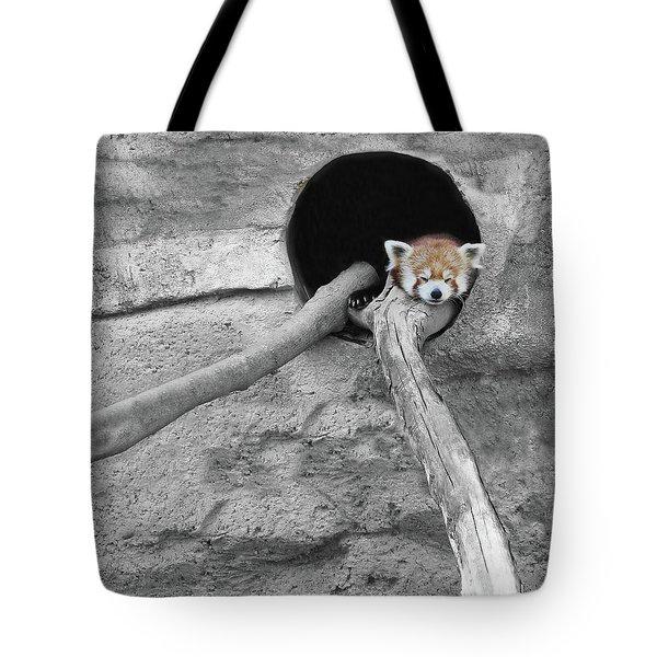 Red Panda Sleeping Tote Bag by Brooke T Ryan