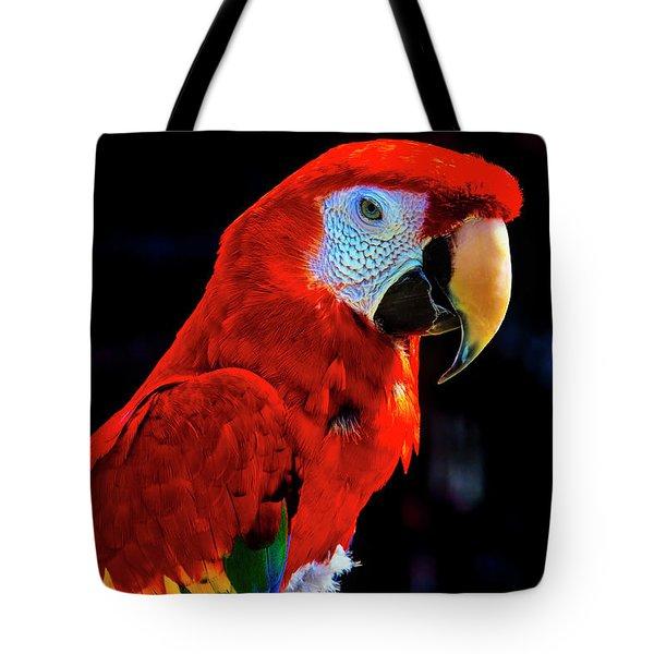 Red Parrot Portrait  Tote Bag