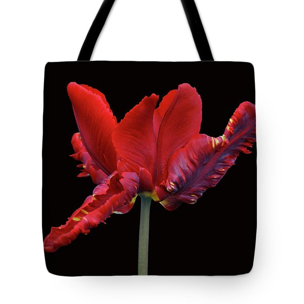 Red Parrot Tulip Tote Bag by Sandy Keeton