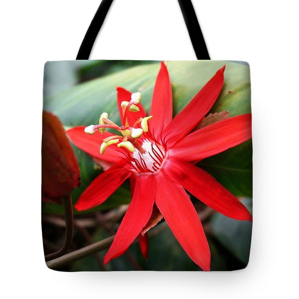 Red Passion Flower Tote Bag