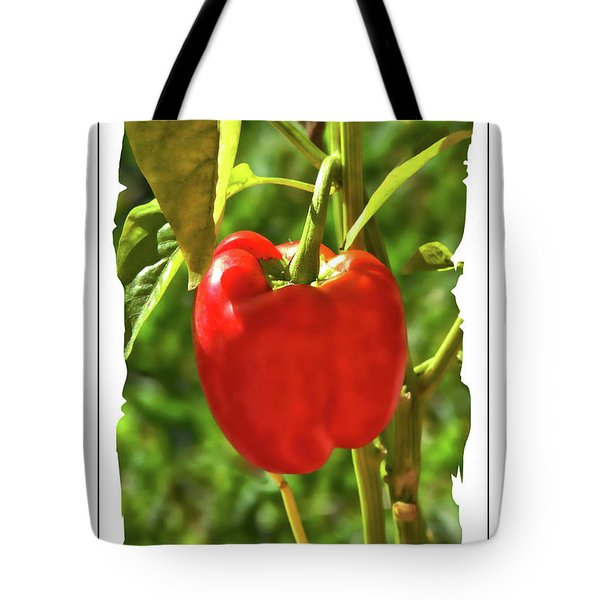 Red Pepper On The Vine Tote Bag