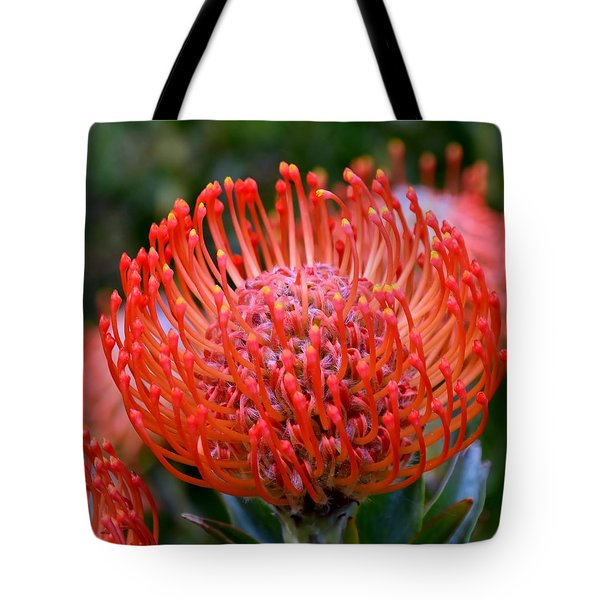Red  Pincushion Protea Tote Bag