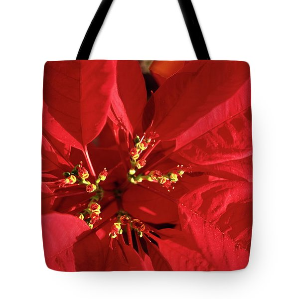 Red Poinsettia Macro Tote Bag by Sally Weigand