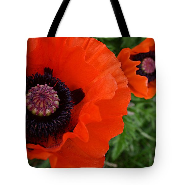 Red Poppies Tote Bag by Lynne Guimond Sabean