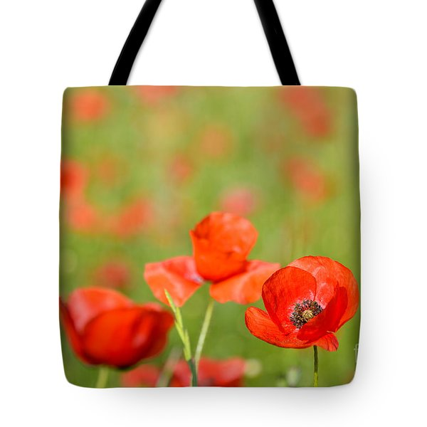 Red Poppy In A Field Of Poppies Tote Bag