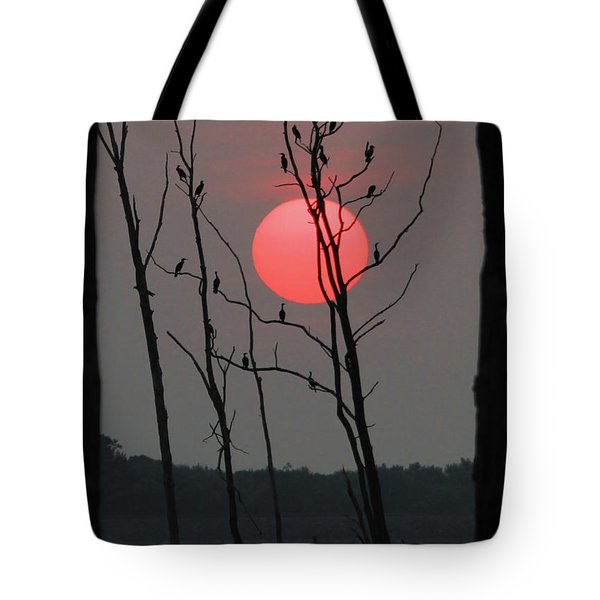 Red Rise Cormorants Tote Bag by Roger Becker