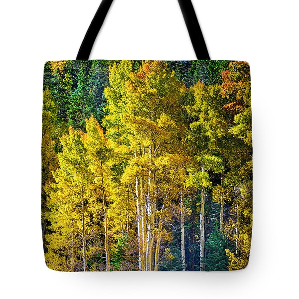 Red River Aspens Tote Bag