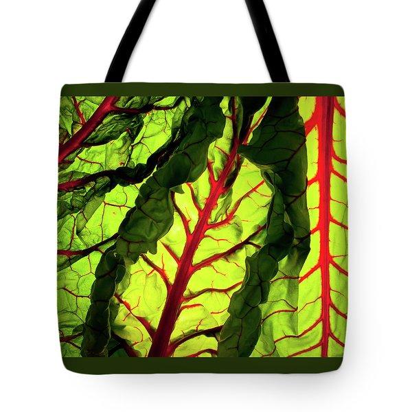 Red River Tote Bag by Bobby Villapando