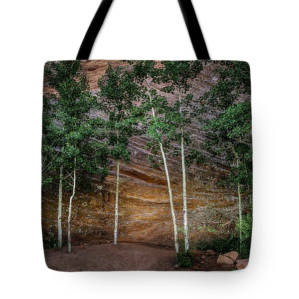 Red Rock Wall Tote Bag