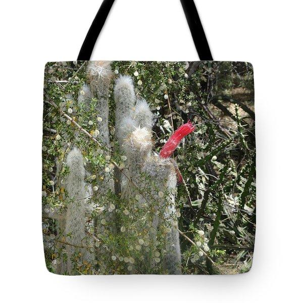 What A Rude Cactus Tote Bag