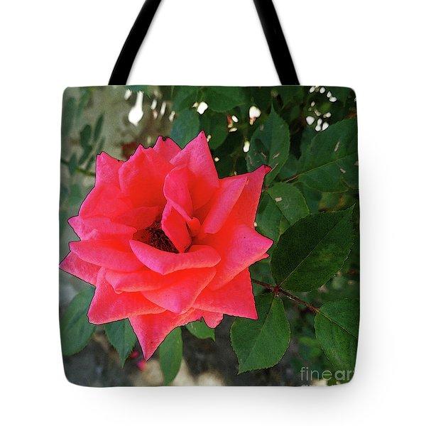 Pink Rose  Tote Bag by Don Pedro De Gracia