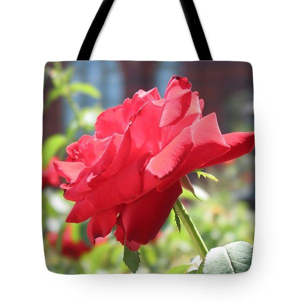 Red Rose Tote Bag by Brian McDunn