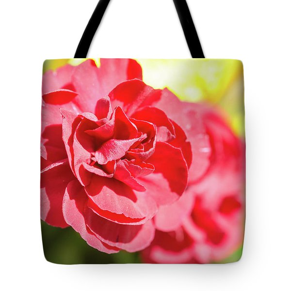 Red Rose II Tote Bag