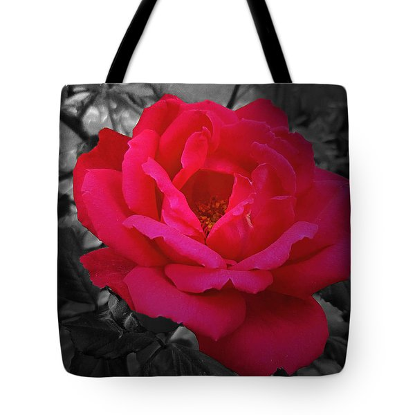 Red Rose On Black And White Tote Bag by Mikki Cucuzzo