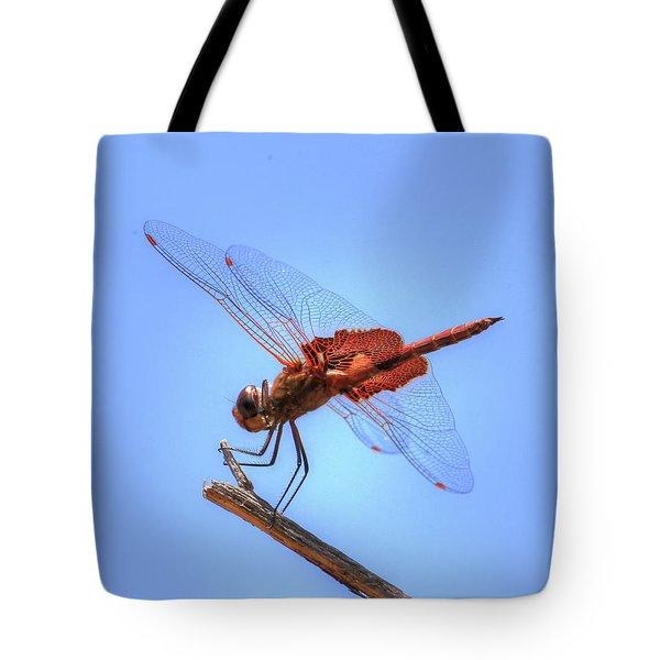 Red Saddlebag Dragonfly Tote Bag