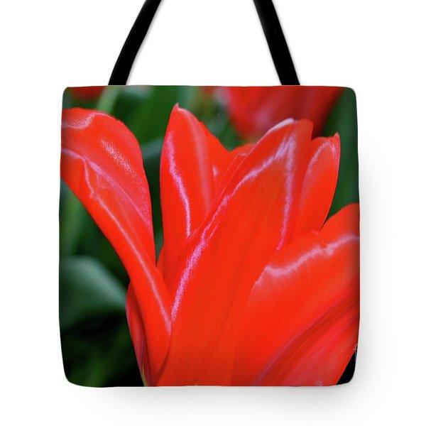 Red Satin Tote Bag