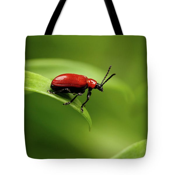 Red Scarlet Lily Beetle On Plant Tote Bag