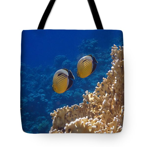 Red Sea Exquisite Butterflyfish  Tote Bag