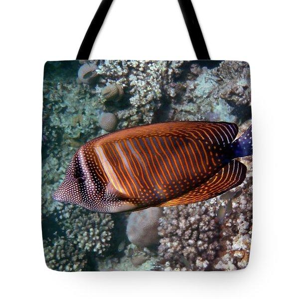 Red Sea Sailfin Tang 3 Tote Bag