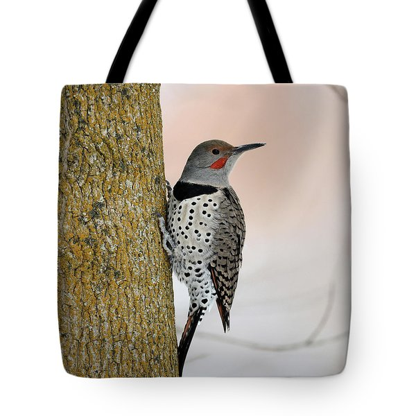 Red Shafted Northern Flicker Tote Bag
