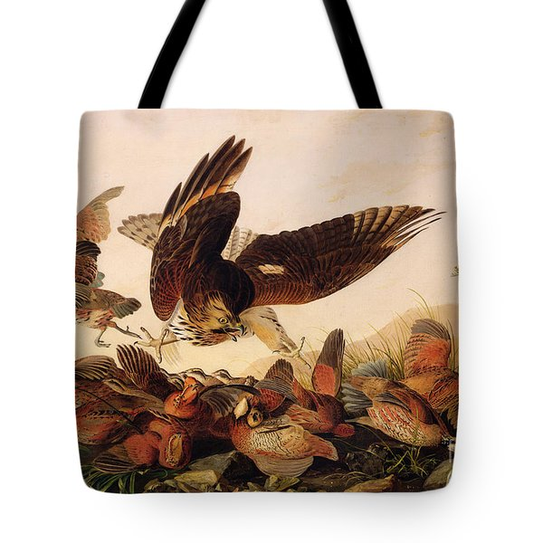 Red Shouldered Hawk Attacking Bobwhite Partridge Tote Bag by John James Audubon