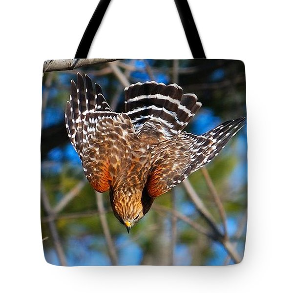 Tote Bag featuring the photograph Red-shouldered Hawk  by Debbie Stahre