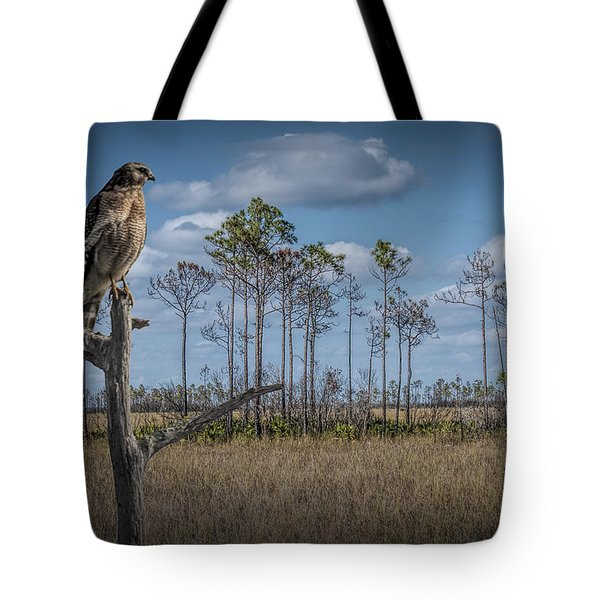 Red Shouldered Hawk In The Florida Everglades Tote Bag