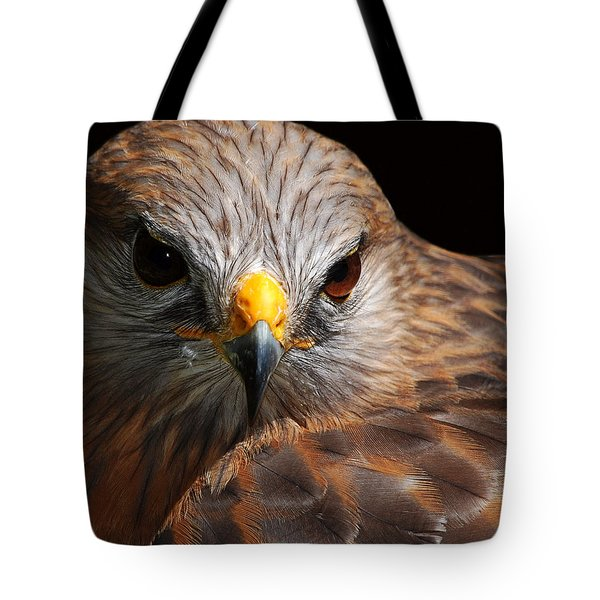 Red-shouldered Hawk Tote Bag by Lorenzo Cassina