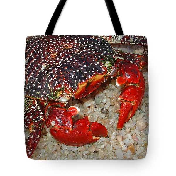 Red Spotted Crab Tote Bag by Karon Melillo DeVega
