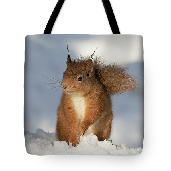 Tote Bag featuring the photograph Red Squirrel In The Snow by Karen Van Der Zijden
