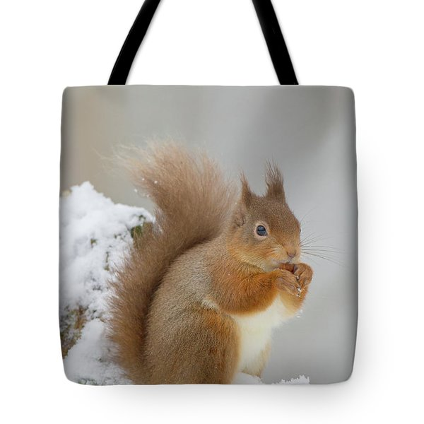 Red Squirrel In The Snow Side On Tote Bag