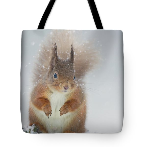 Red Squirrel In Winter Tote Bag
