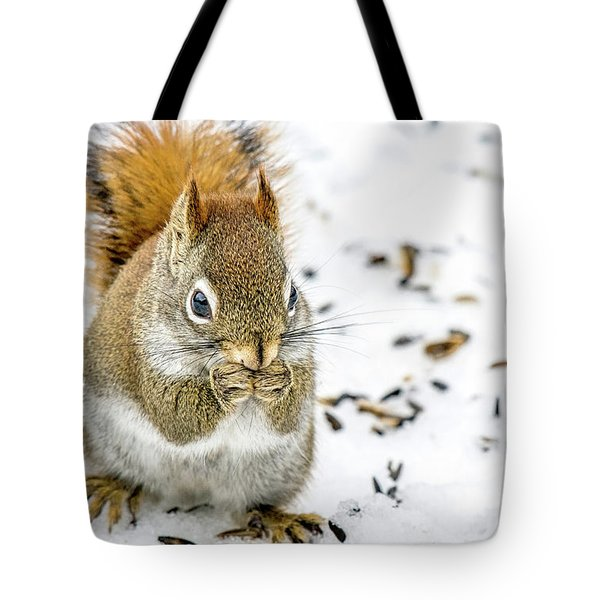 Red Squirrel Tote Bag by Irwin Seidman