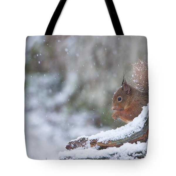 Red Squirrel On Snowy Stump Tote Bag