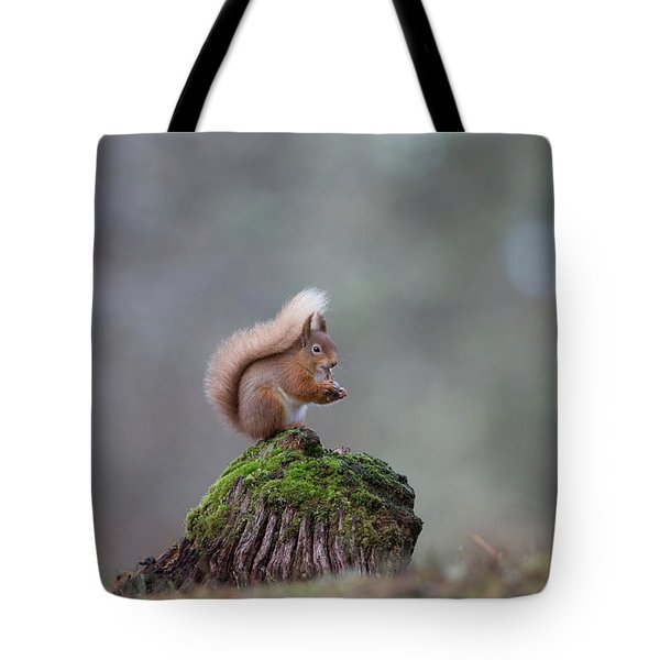 Red Squirrel Peeling A Hazelnut Tote Bag