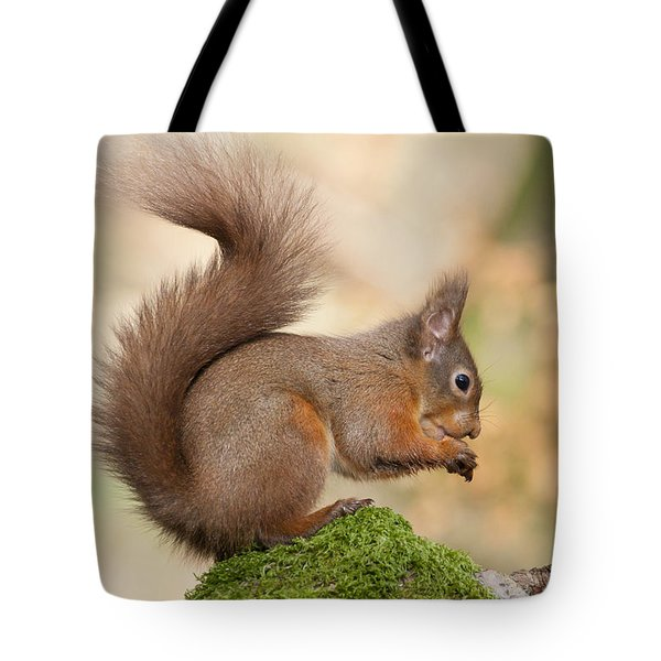 A Moment Of Meditation - Red Squirrel #27 Tote Bag