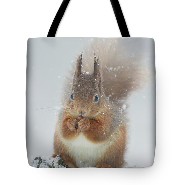 Red Squirrel With Snowflakes Tote Bag