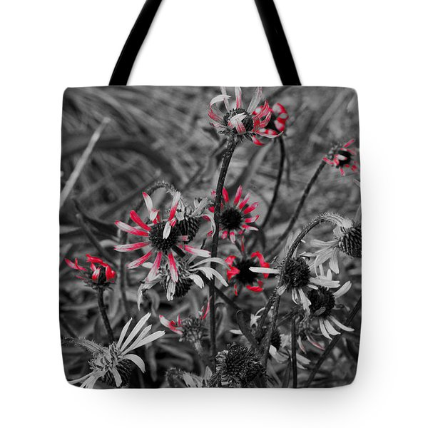Tote Bag featuring the photograph Red Streaks by Deborah  Crew-Johnson