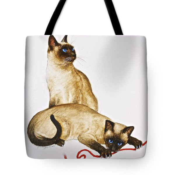 String Theroy  Tote Bag