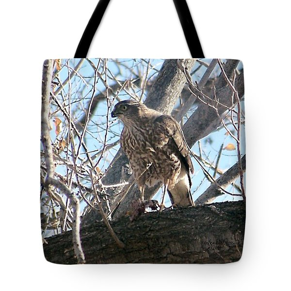 Tote Bag featuring the digital art Red Tail Hawk by Deleas Kilgore