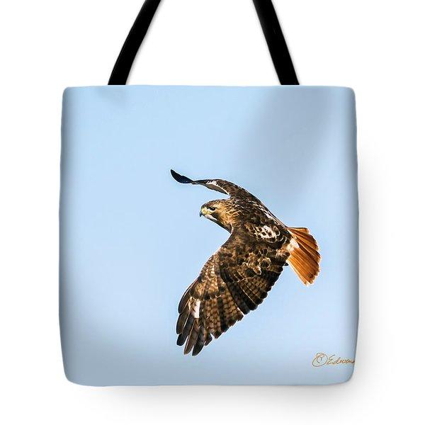 Red-tail Hawk In Flight Tote Bag