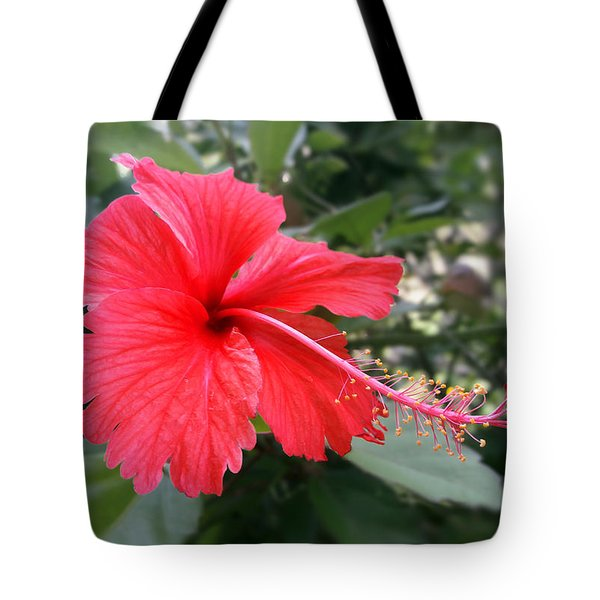 Red-tailed Flower Portrait Tote Bag