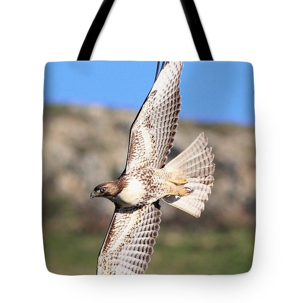 Red Tailed Hawk - 20100101-8 Tote Bag by Wingsdomain Art and Photography