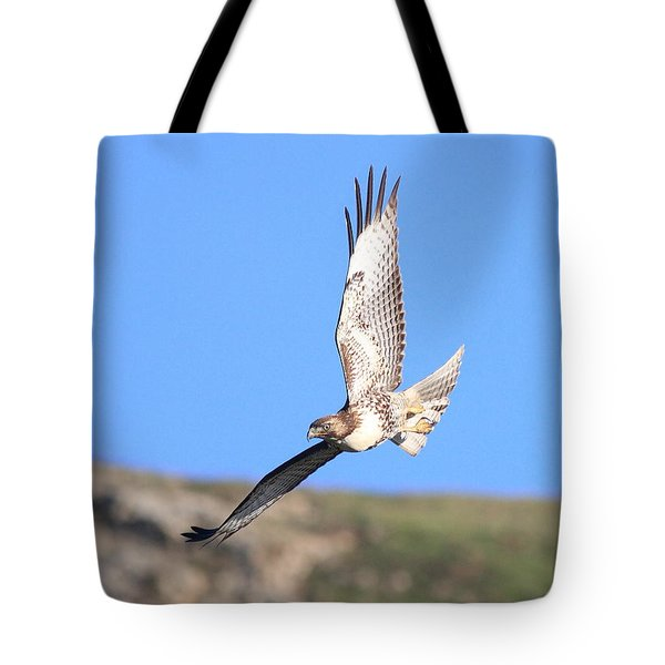 Red Tailed Hawk 20100101-6 Tote Bag by Wingsdomain Art and Photography