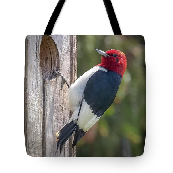 Tote Bag featuring the photograph Red-headed Woodpecker 2018  by Ricky L Jones