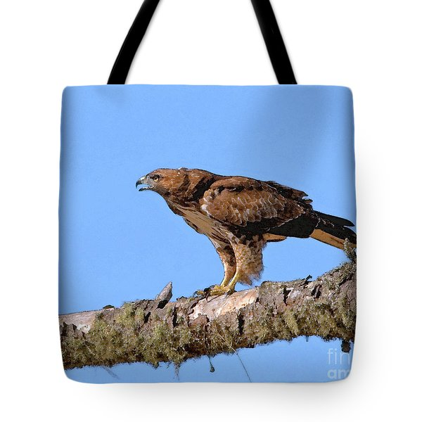 Red-tailed Hawk Tote Bag by Betty LaRue